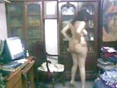 शरारती संचिका लैला गुलाब सोफे पर उसकी बिल्ली सेक्सी फिल्म मूवी हद खिलौने